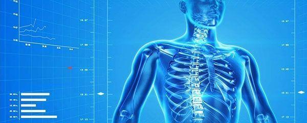 Lesiones en el torso, abdomen, lumbalgia y columna vertebral provocadas en un accidente de tráfico